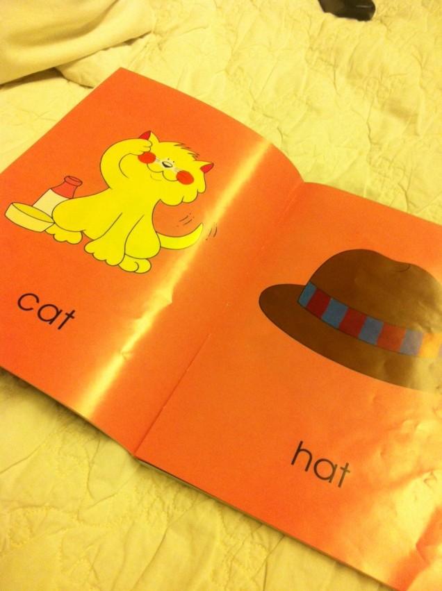 cat - hat
